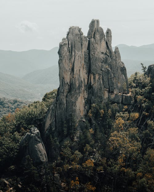 Rock formation in the middle of forest
