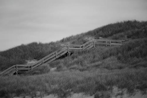 Free stock photo of beach, black, chill
