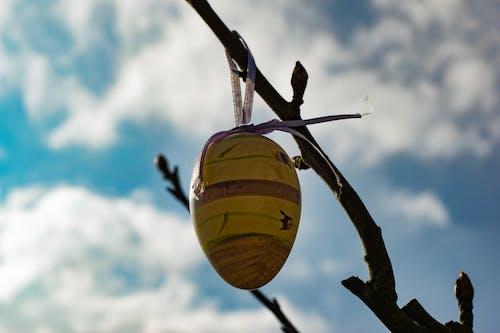 復活節, 復活節彩蛋, 東, 藍天 的 免費圖庫相片