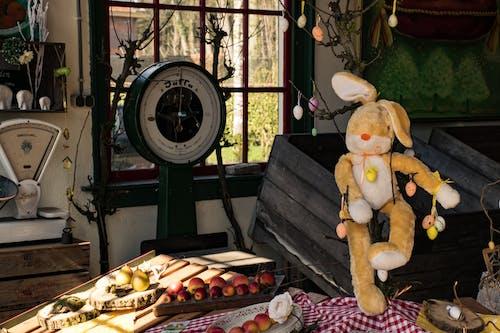 Gratis lagerfoto af frugt, God påske, kanin, påske dekorationer