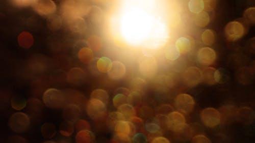 Darmowe zdjęcie z galerii z deszcz, złoto