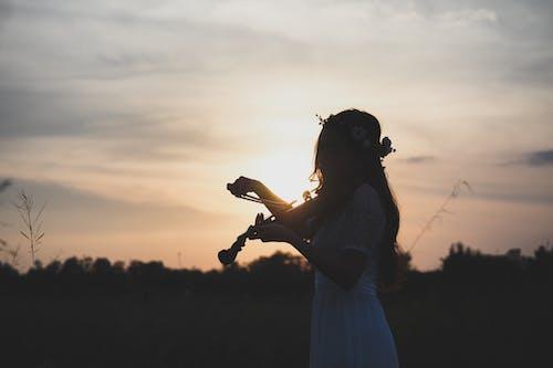Foto profissional grátis de alvorecer, garota, iluminado por trás, mulher