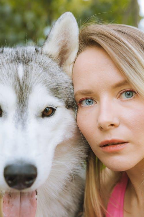 Darmowe zdjęcie z galerii z deskorolka, dziewczyna z psem, futro