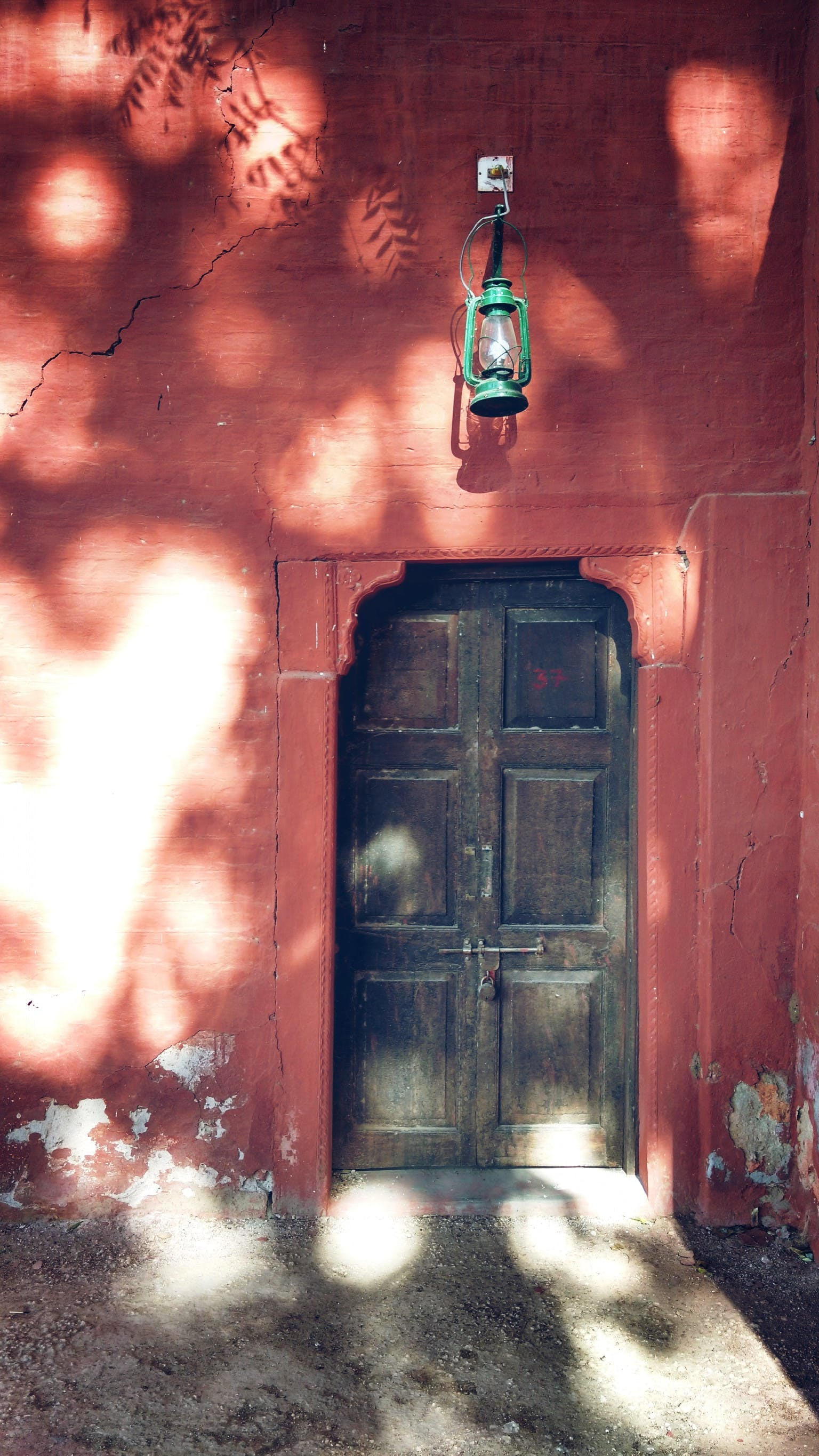 Free stock photo of light, red, wall, tree