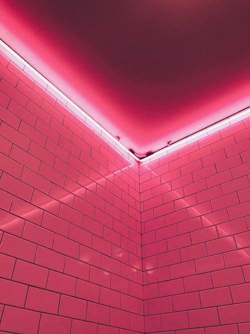 Gratis lagerfoto af fliser, hjørne, lys, lyserød