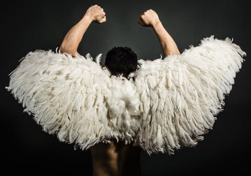 Photos gratuites de ailes, costume, déguisement, homme
