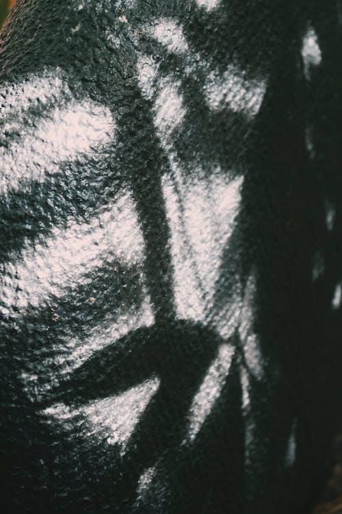 Free stock photo of art, black and white, lighting