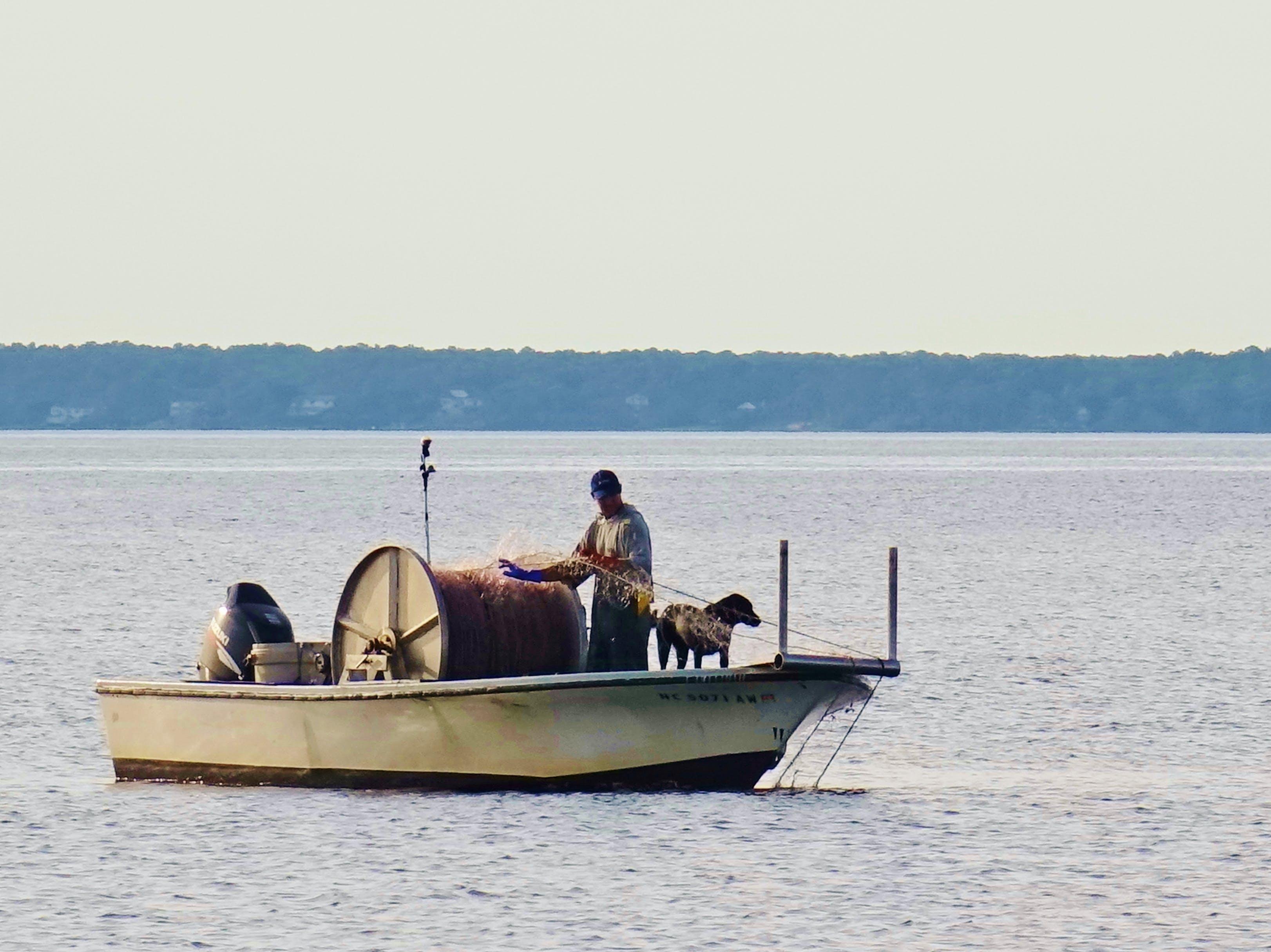 Free stock photo of fishing, dog, fishing boat