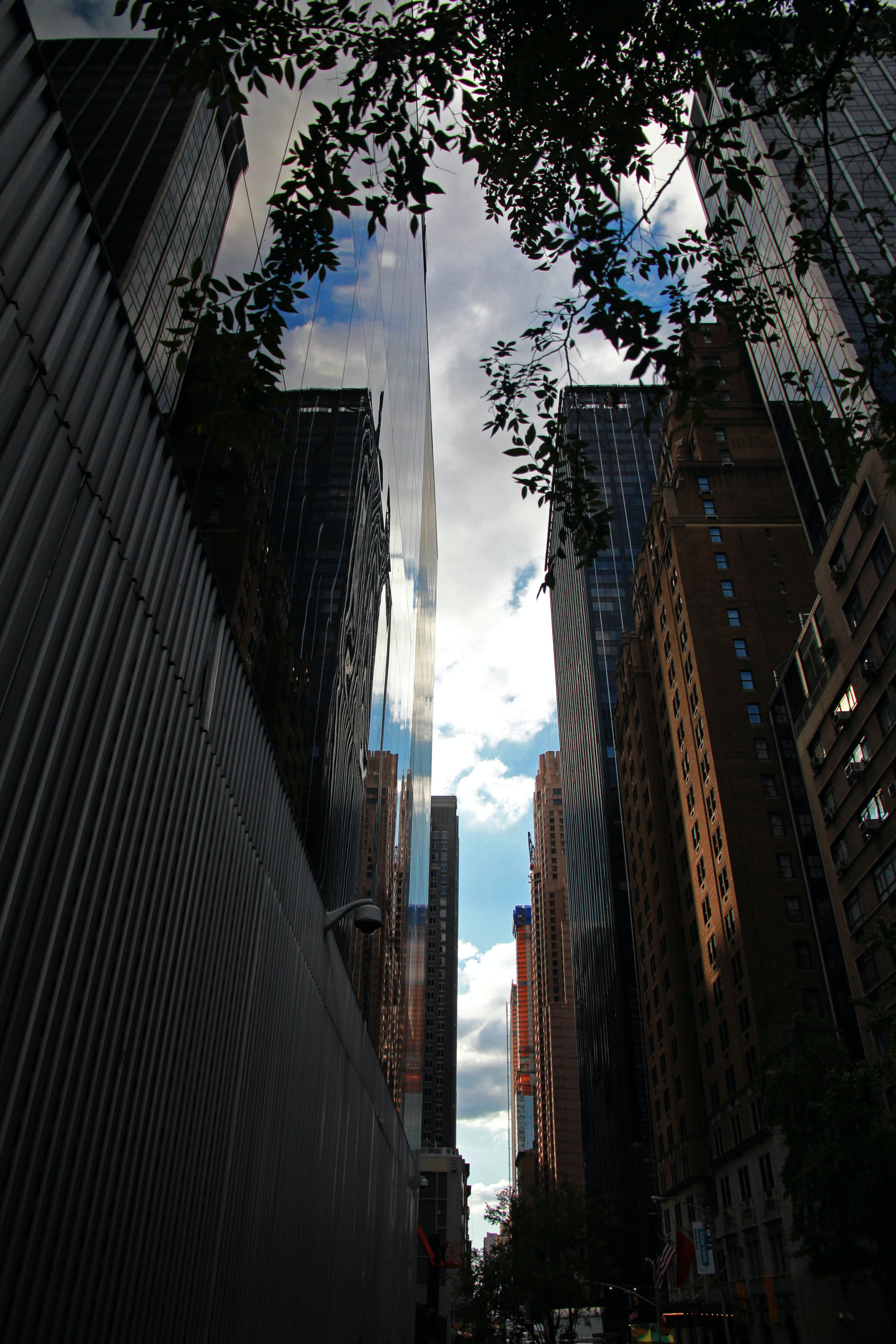 Low-angle Photograph of City Structures