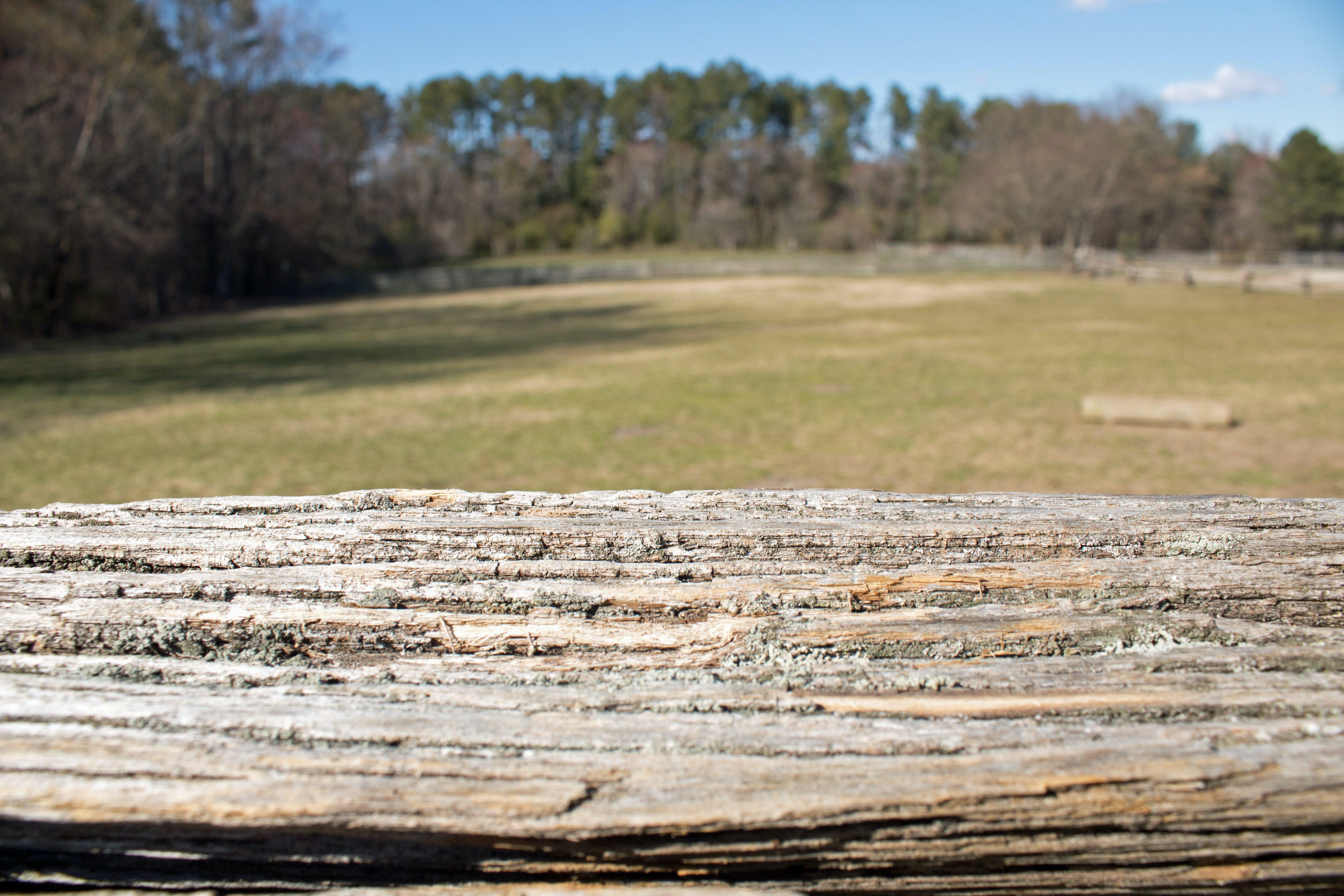 Free stock photo of wood fence