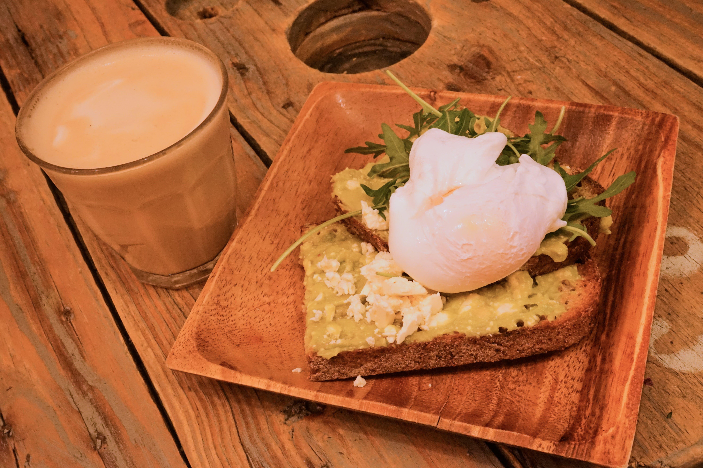 Free stock photo of avocado, brown, café, cheese