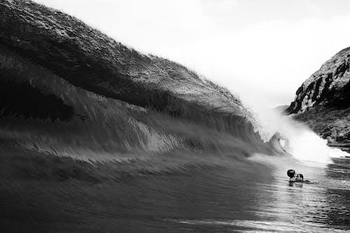 人, 冬季, 旅行 的 免費圖庫相片