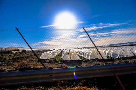 Kostenloses Stock Foto zu landschaft, himmel, sonnig, wolken