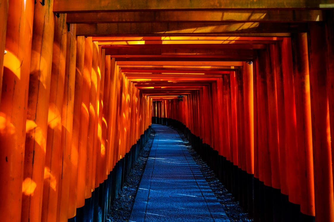 fushimi inari-taisha, kyoto, torii