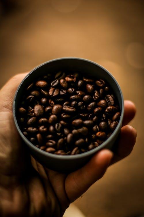 Immagine gratuita di chicchi di caffè, mano, nero
