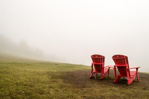 çim, çimen, doğa, iskemleler içeren Ücretsiz stok fotoğraf