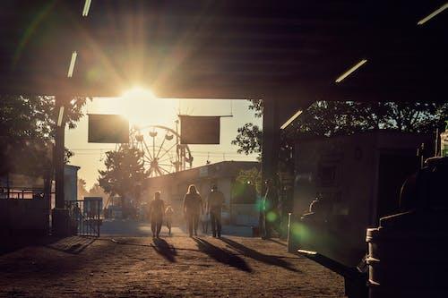 Photos gratuites de aube, brouillard, coucher de soleil