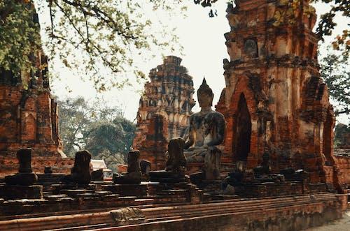 泰國 的 免费素材照片