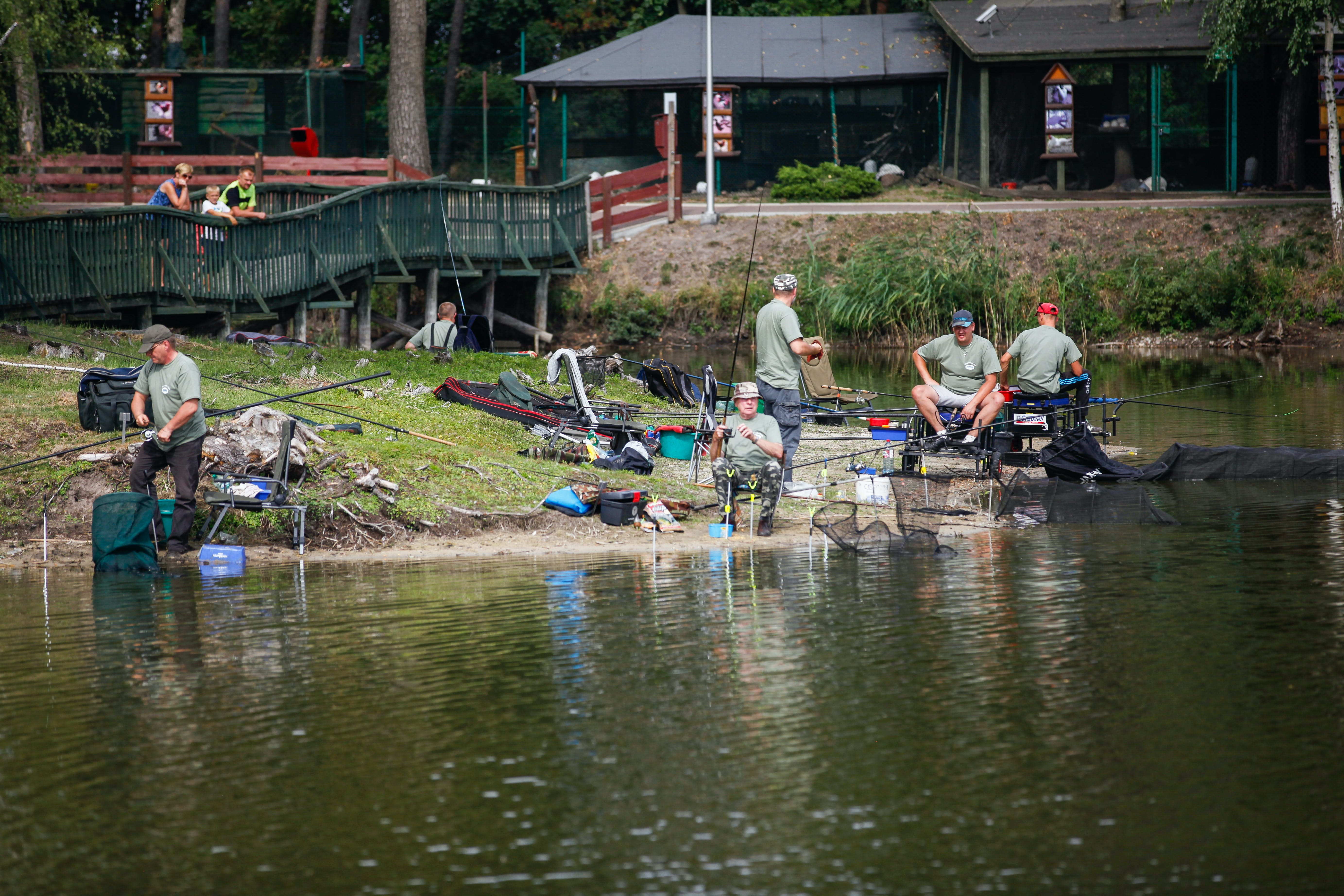 Free stock photo of angler, anglers, competition, fishing