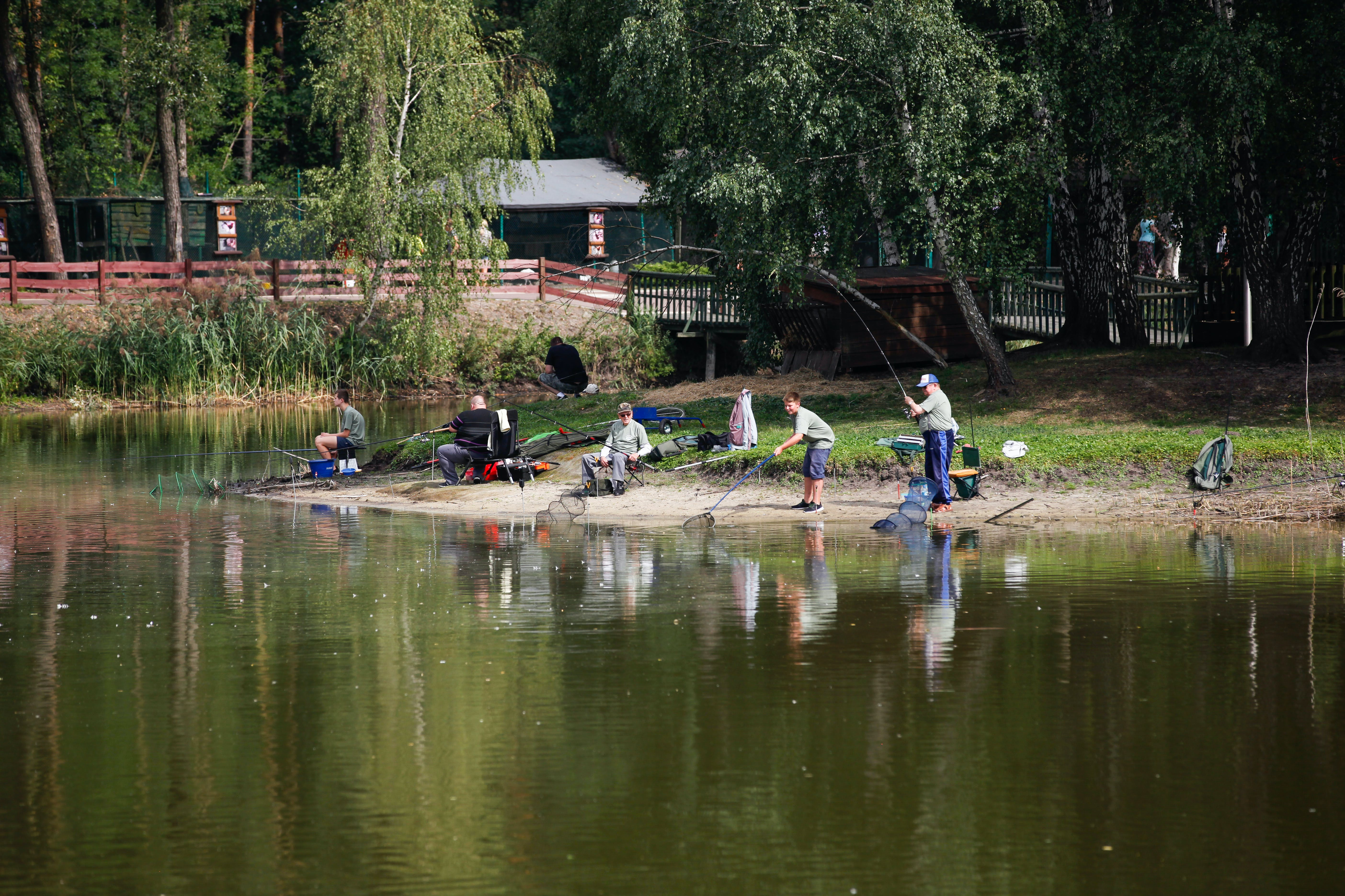 Free stock photo of competition, fish, fishing