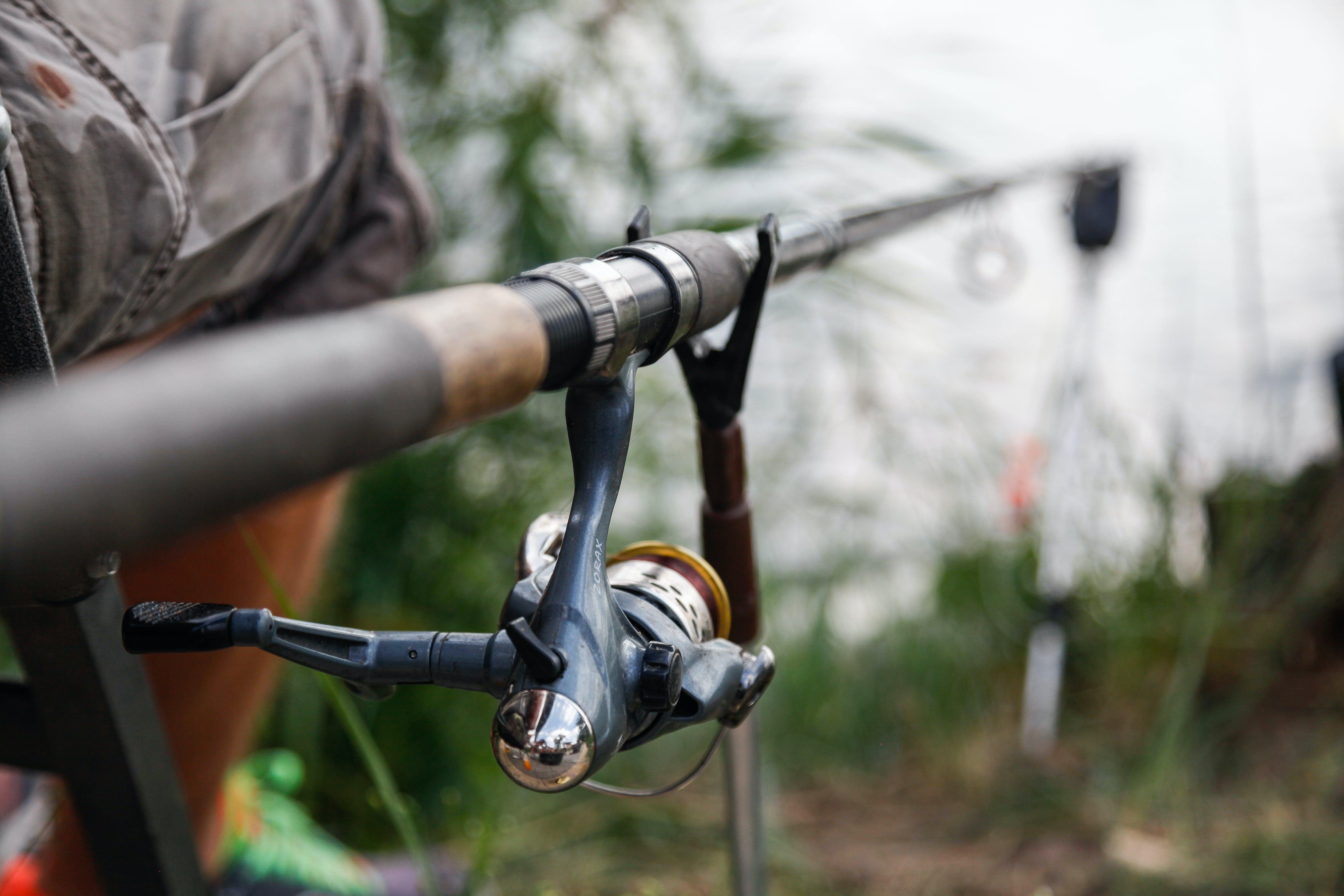Free stock photo of fishing, fishing rod, hobby