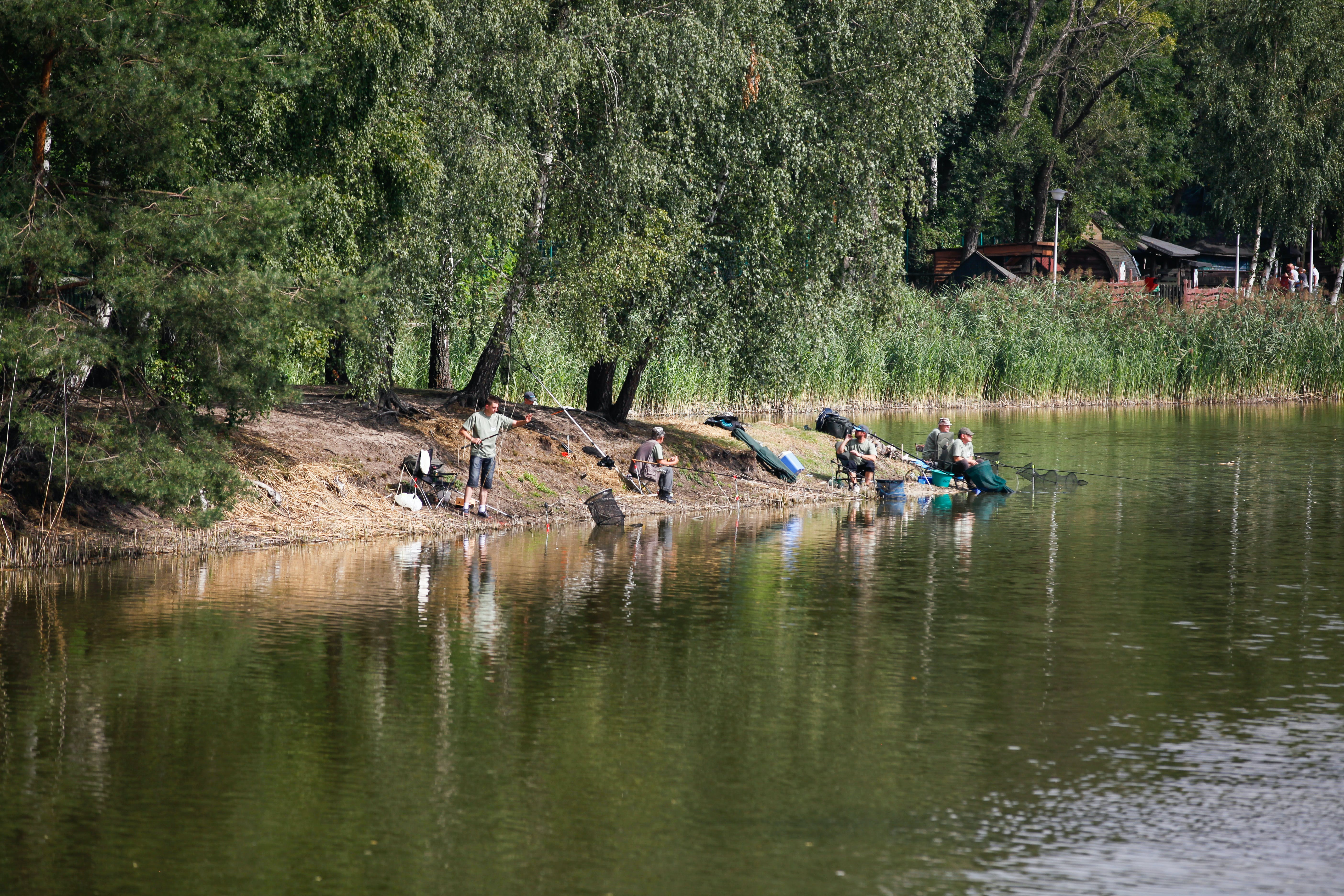 Free stock photo of angler, anglers, competition, family