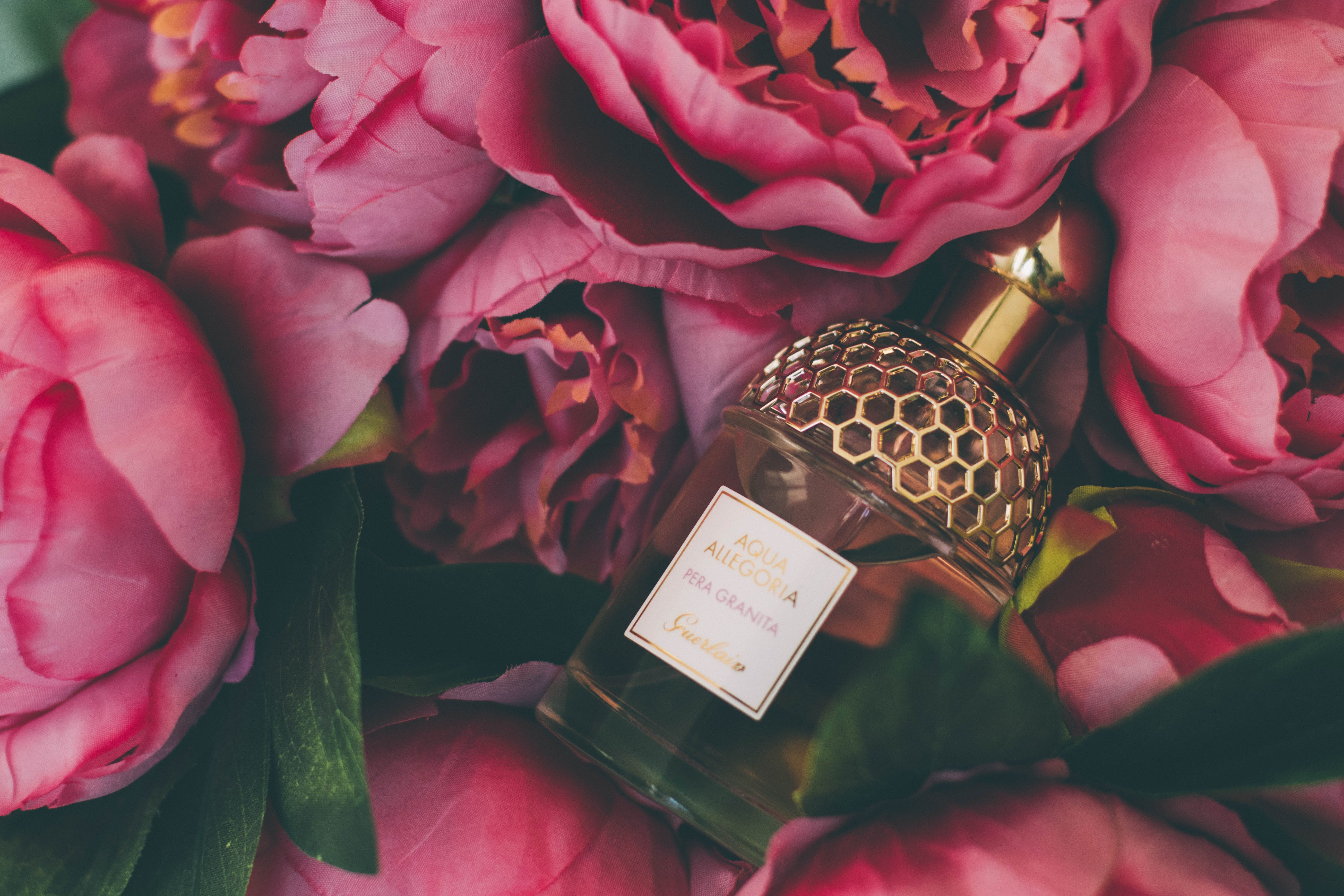 Bouquet of Pink Roses - Fragrance Direct