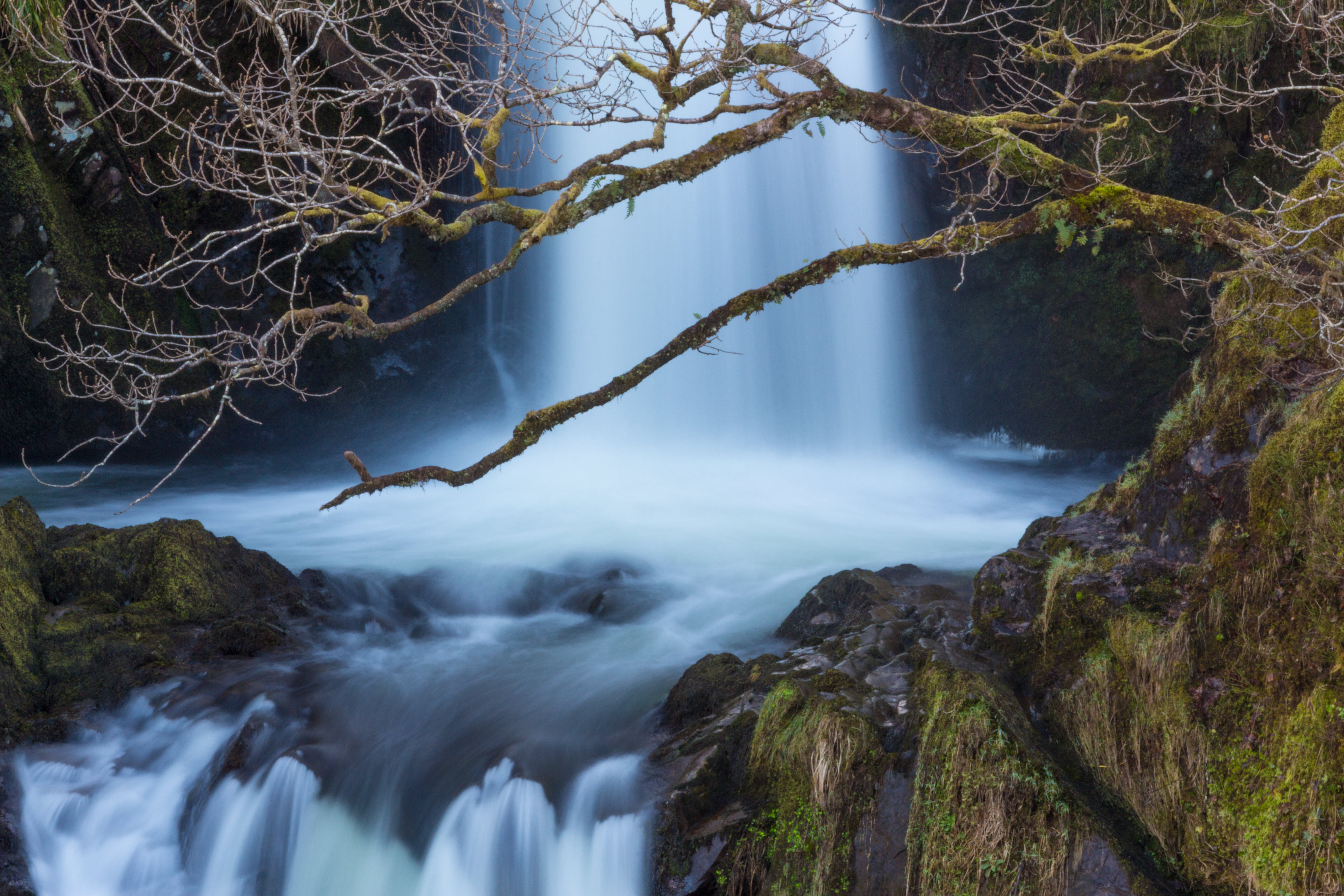 Foto stok gratis air, air terjun, aliran, lumut