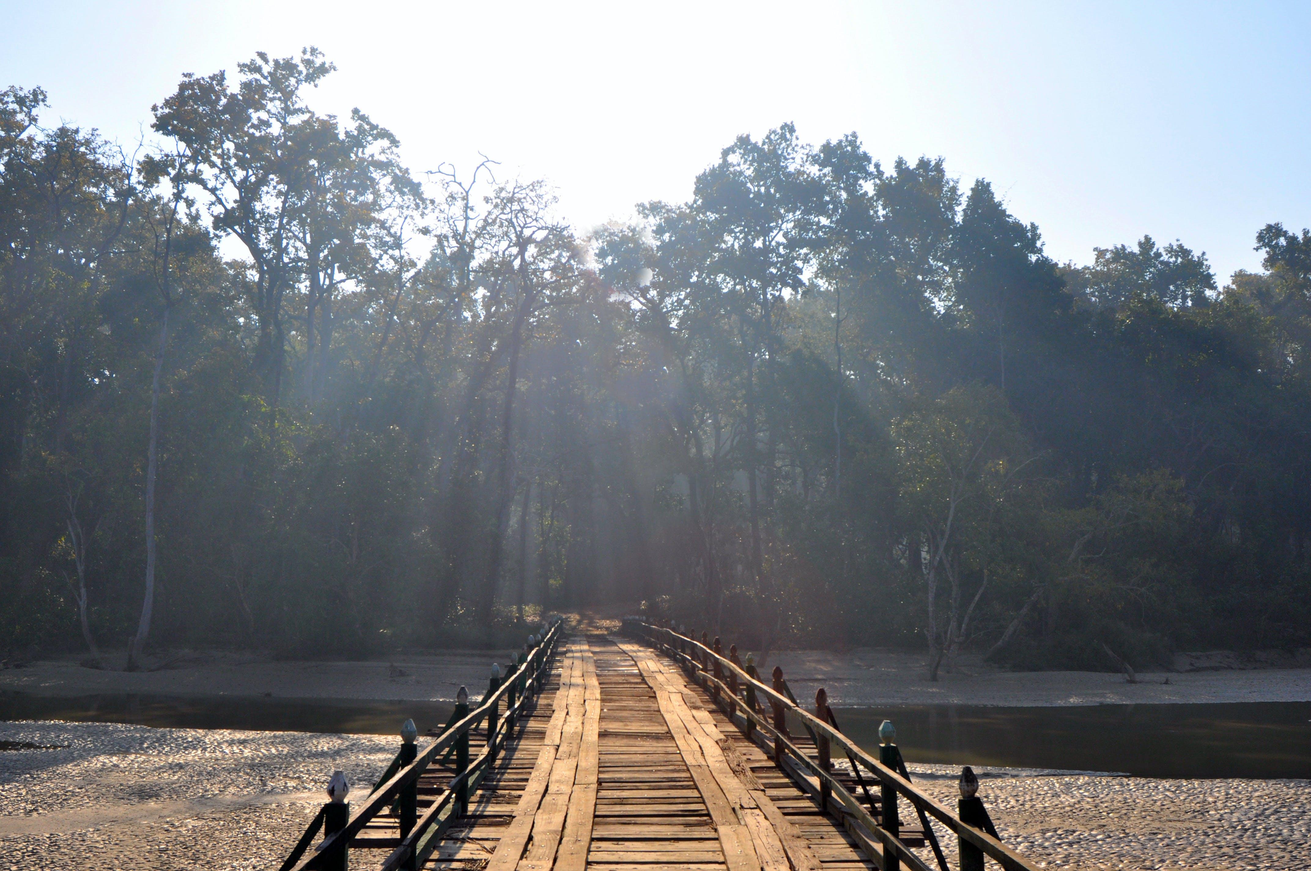 Kostenloses Stock Foto zu brücke, handgefertigt, holzbrücke, sanray