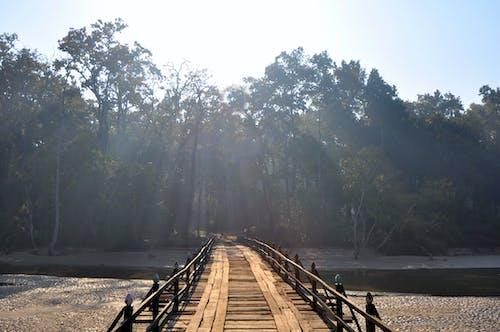 Free stock photo of bridge, handmade, sanray