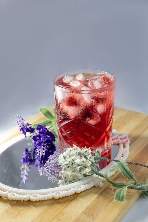 Základová fotografie zdarma na téma čaj, domácí, h2o