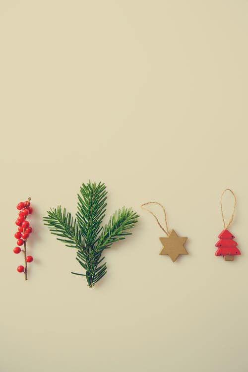 Green and Red Pine Tree and Brown Star Ornament