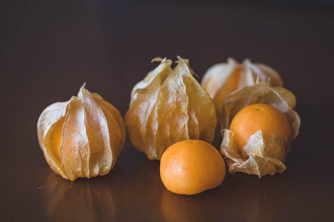 Closeup Photography of Psysaliss Fruit