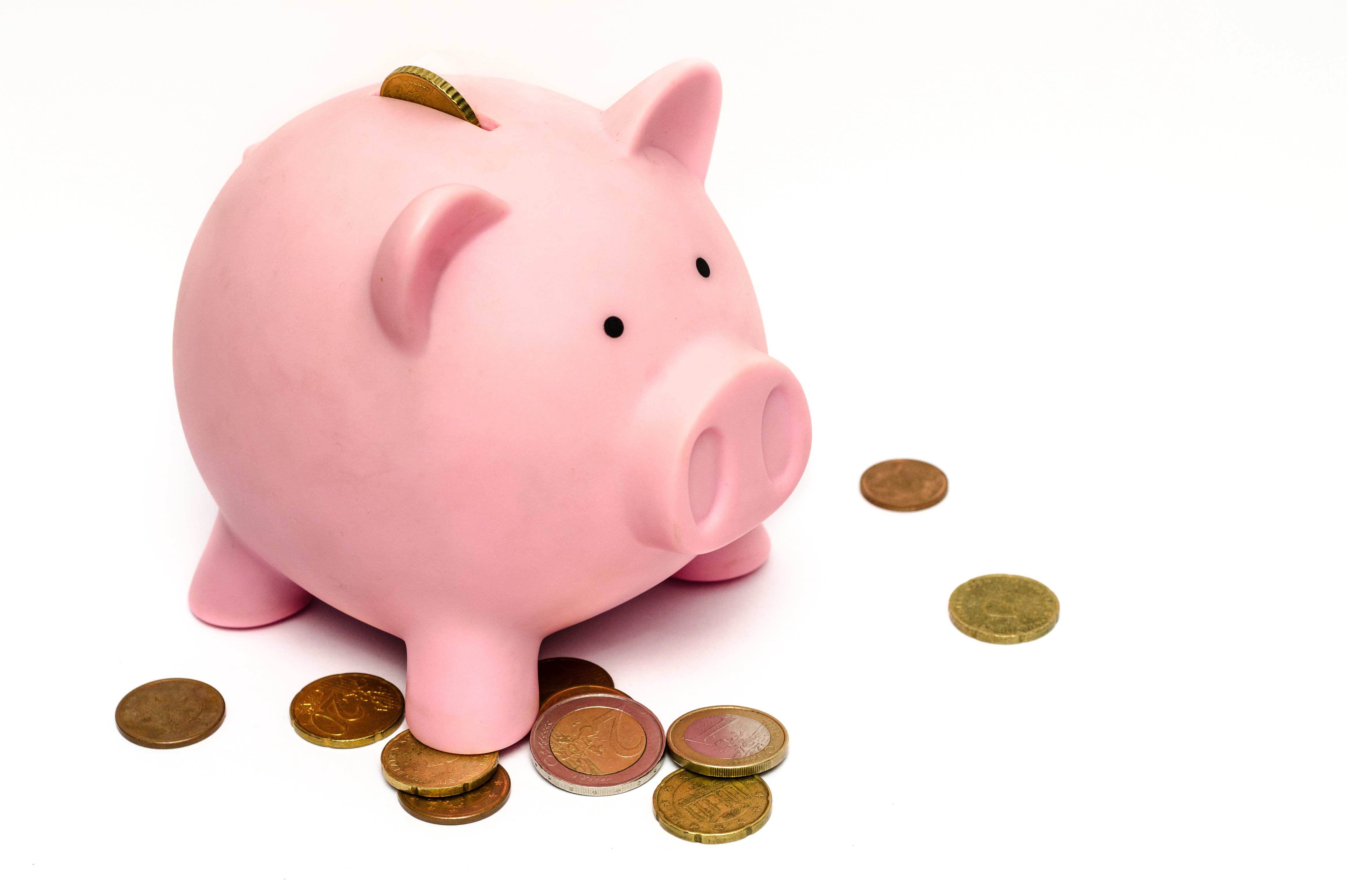 Piggy Bank With Coins · Free Stock Photo