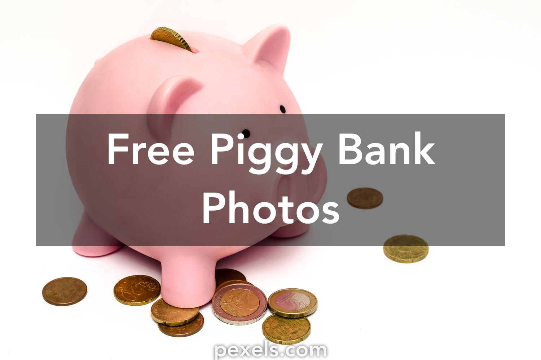 100 great piggy bank photos pexels free stock photos