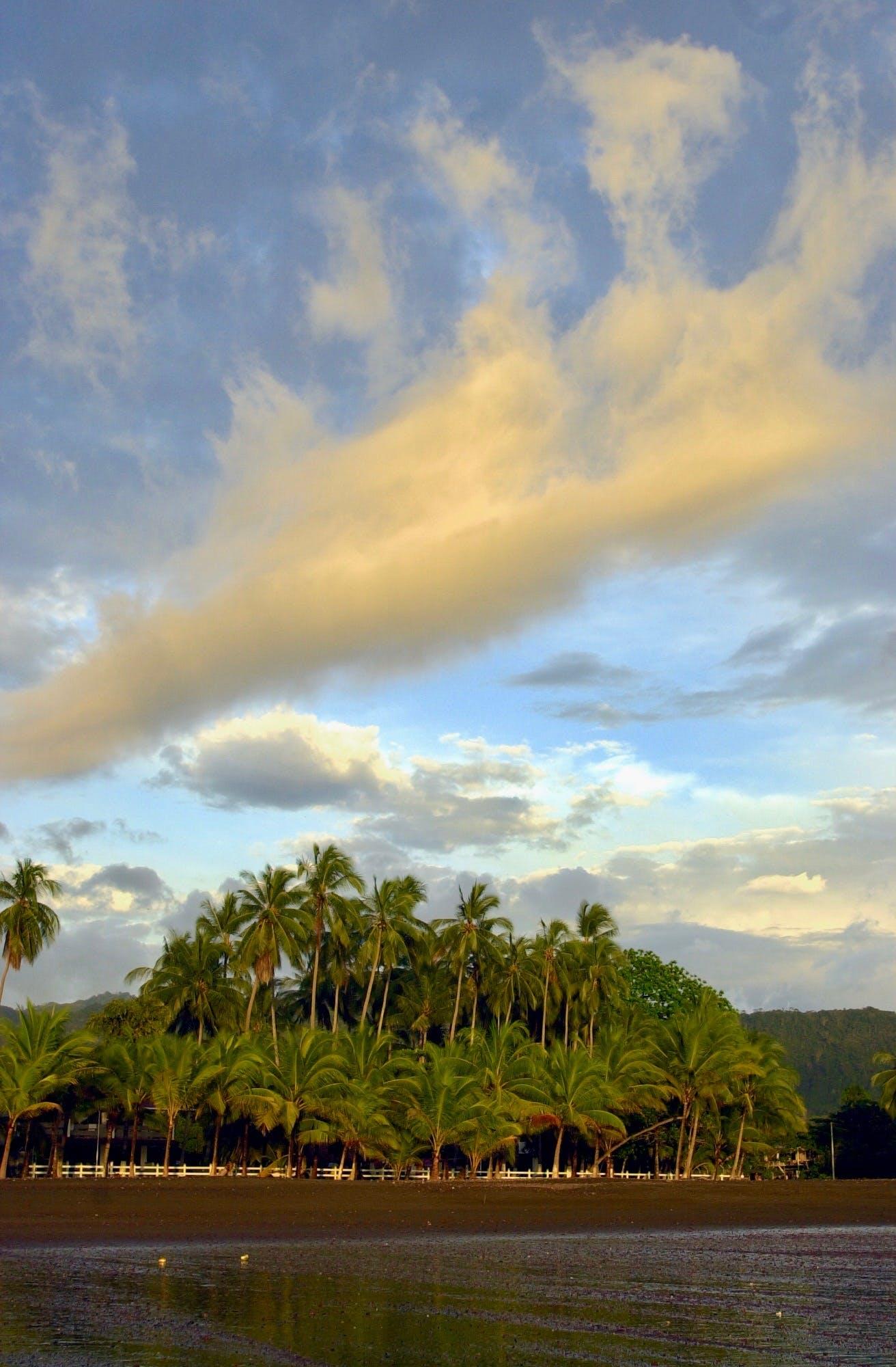 Free stock photo of Costa_Rica, nuves, palmeras, playa