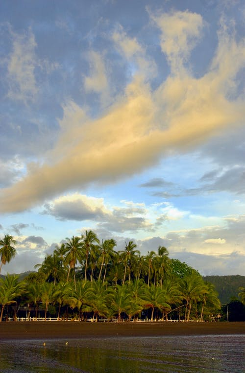 costa_rica, nuves, palmeras, playa içeren Ücretsiz stok fotoğraf