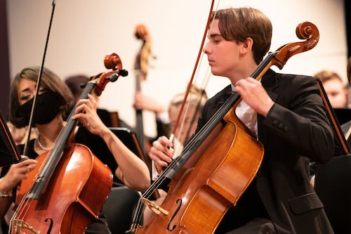 Free stock photo of bow, cello, classical music