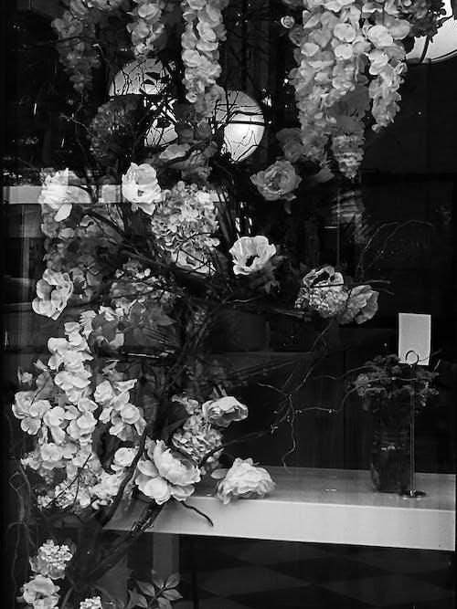 Gratis stockfoto met bloemen, bloemist