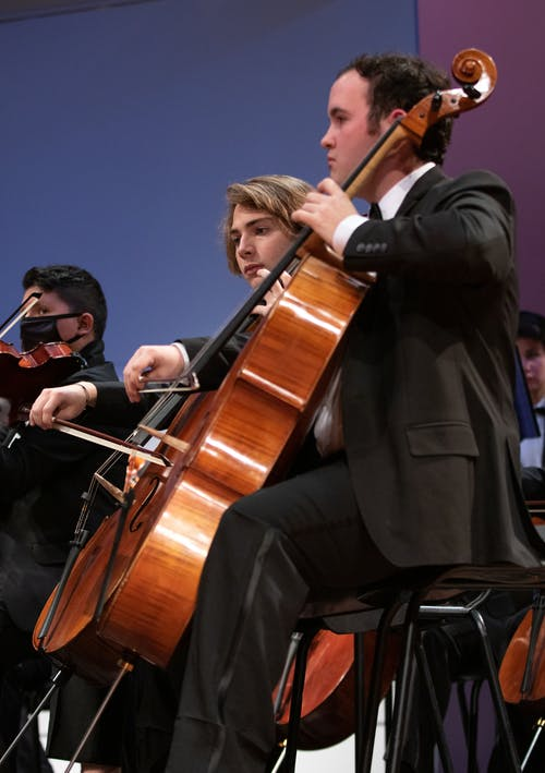 Free stock photo of cello, classical music, concert