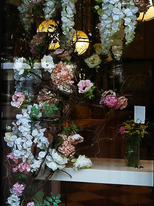 Gratis stockfoto met kleurrijke bloemen, raamdecoratie
