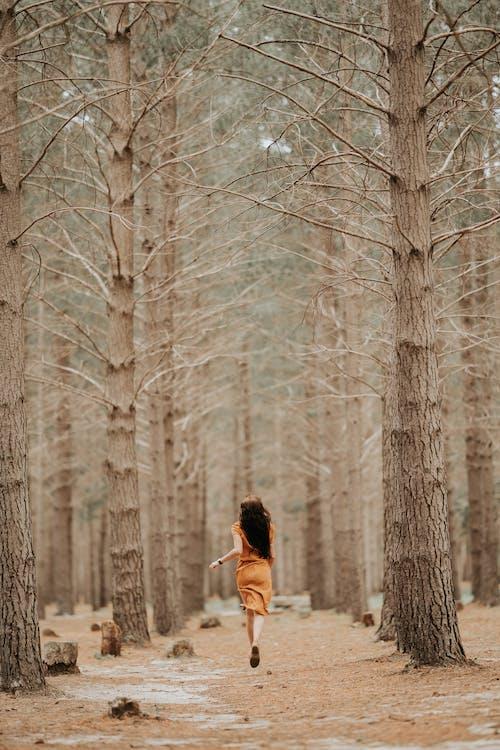 Základová fotografie zdarma na téma běhání, dobrodruh, dobrodružství