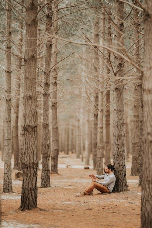 Základová fotografie zdarma na téma čtení, čtení knih, čtení knihy