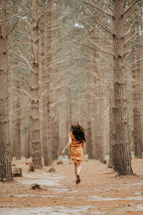 Základová fotografie zdarma na téma běhání, čtení, čtení knih