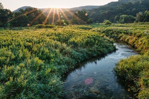 가을, 가족, 강의 무료 스톡 사진