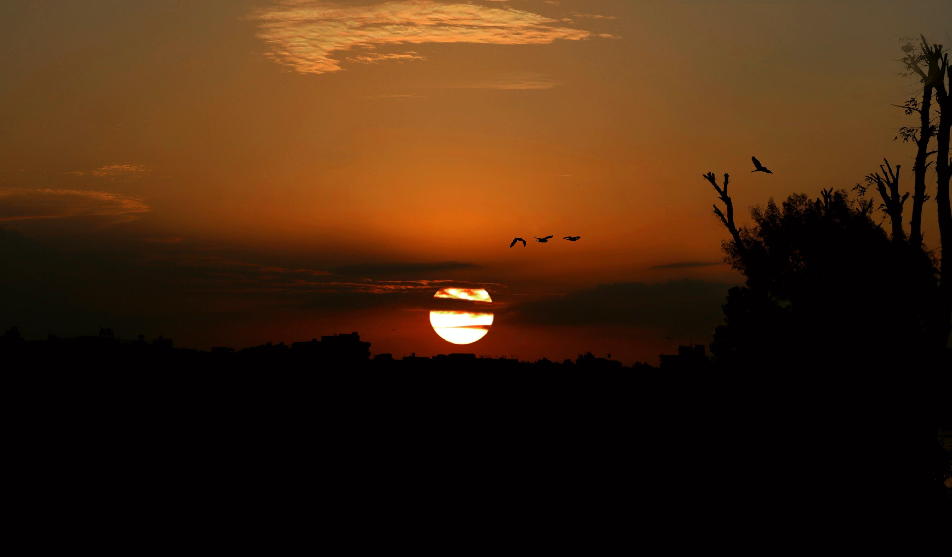 Δωρεάν στοκ φωτογραφιών με Ανατολή ηλίου, αυγή, γραφικός, δέντρο