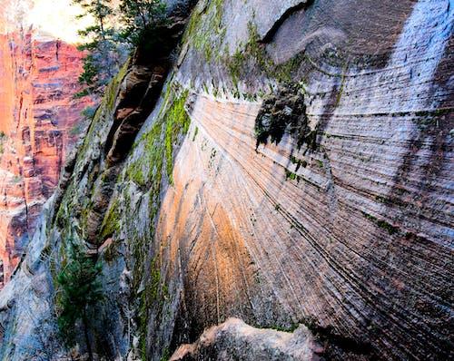 危險, 國家公園, 地形, 地質學 的 免費圖庫相片