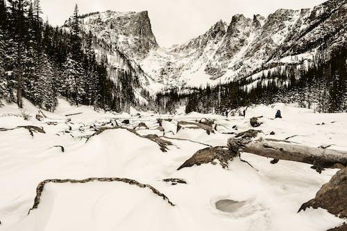 Free stock photo of coloado, rocky mountain, rocky mountain national park, rocky mountains