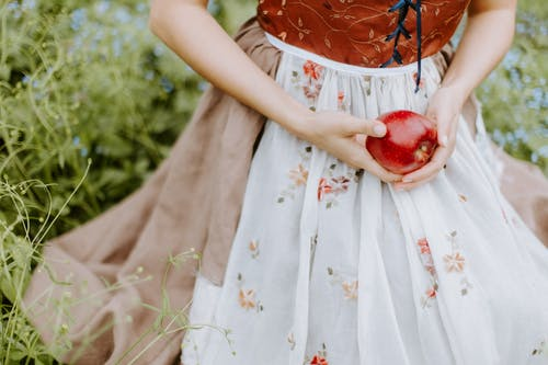 Foto stok gratis apel, apple, bagus