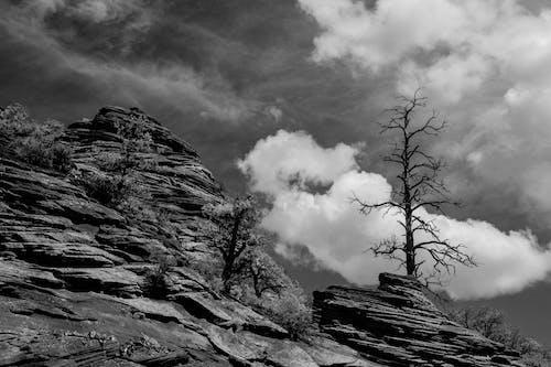 Foto d'estoc gratuïta de blanc i negre, mirador, paisatge